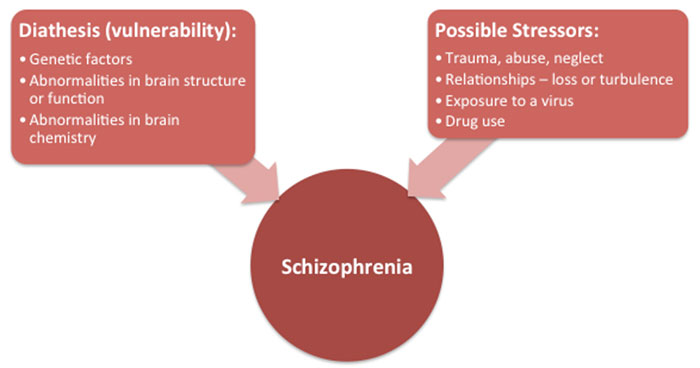Schizophrenia Diagram